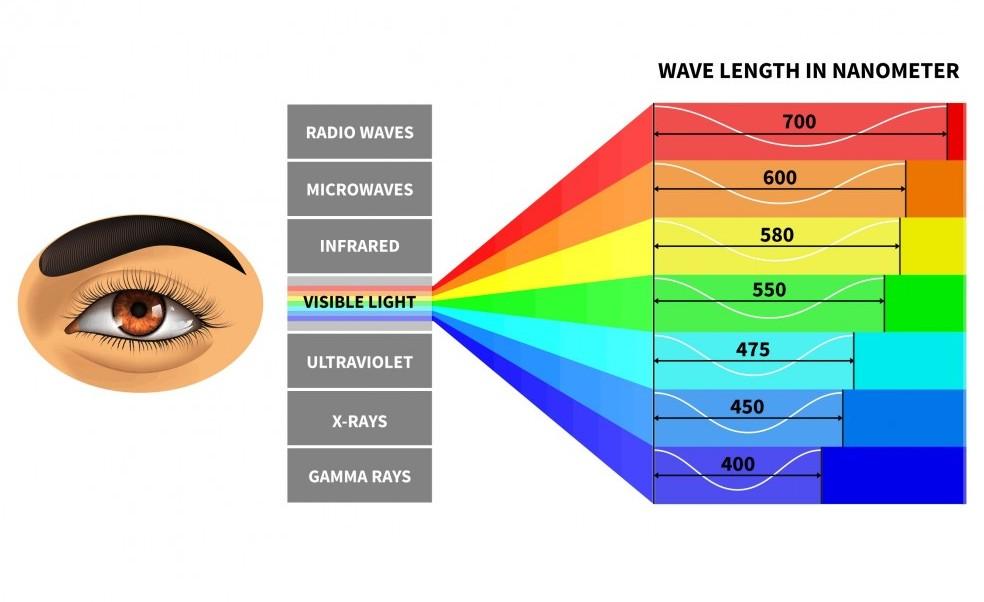 Visible Light Spectrum Image