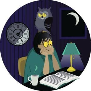 night owls stay up late at night