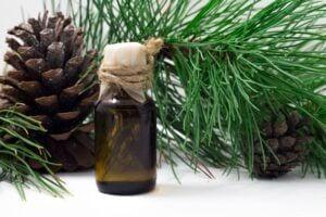 Cedarwood Essential Oil Aromatherapy for Better Sleep