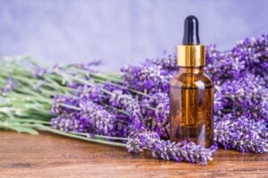 Lavender Essential Oil Aromatherapy for Better Sleep