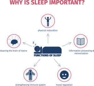 Why is Sleep Important - 5 functions of sleep - Simply Good Sleep