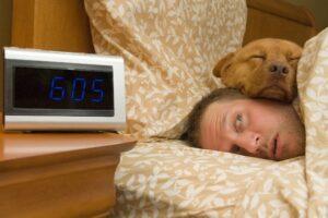 Man's sleep disrupted by his dog's sleeping style - Simply Good Sleep