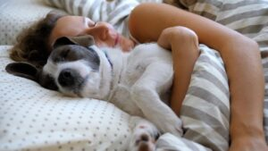 Woman sleeping soundly in bed with her pet dog - Simply Good Sleep